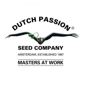 Logo van webshop Dutch Passion